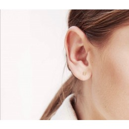 Order your Jordaan Ear Studs Silver plated or 14 kt gold plated online at Amstory.nl