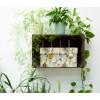 Mooi en stevig, gemaakt van FSC eco karton