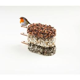 Schöne Überraschung: Nachdem die Vögel das Dessert probiert haben, erscheint ein originaler lasergeschnittener Eis am Stiel in Form eines Rotkehlchens, einer Kohlmeise oder eines Ringelsittichs.
